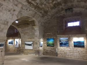 Exposition du 24 août au 6 sept. 2020 à la Citadelle d'Oléron - Catherine Mourier-Godin